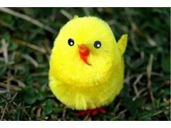Пиленце за декорация